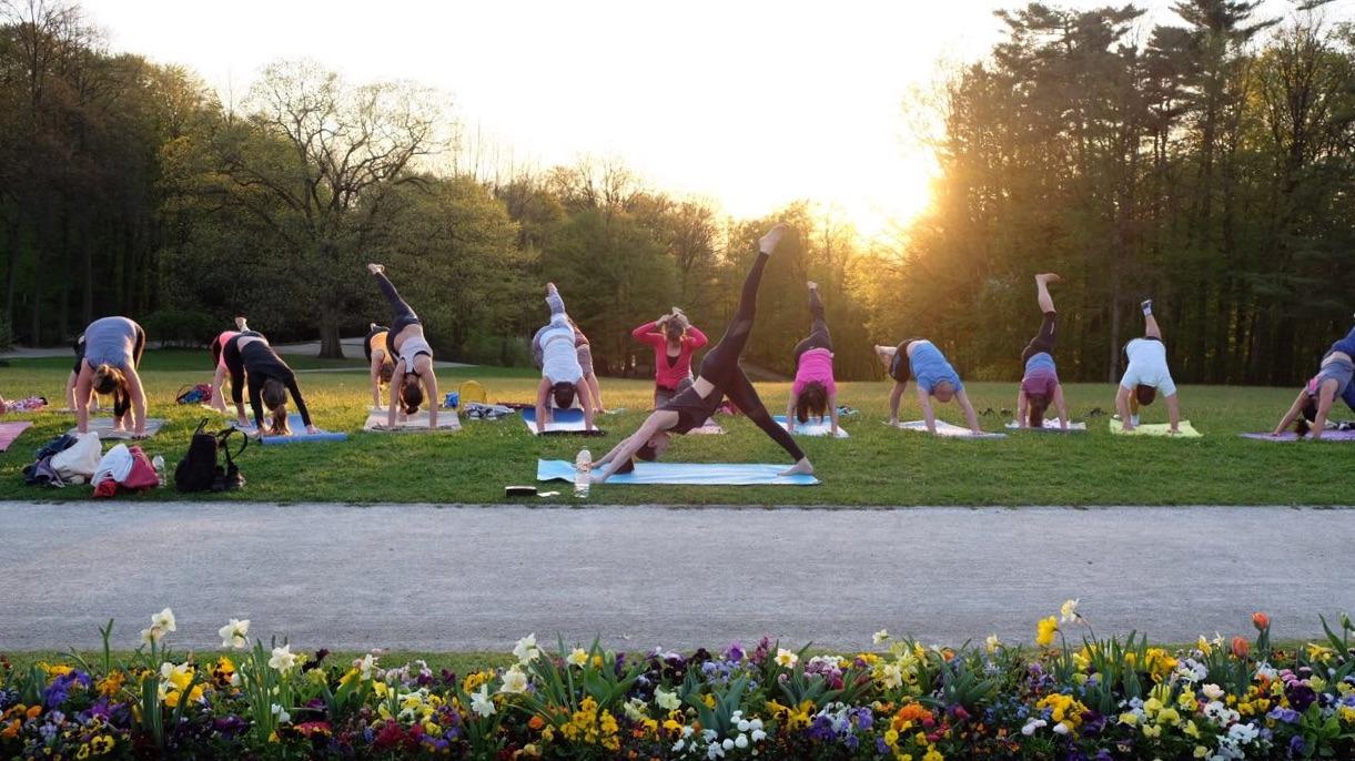 Yoga Anfänger auf Yogamatten